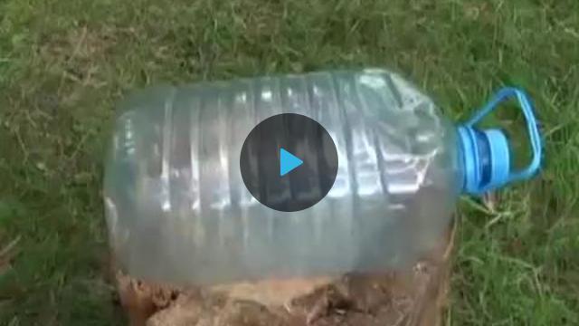 Как сделать ловушку для рыбы из бутылки