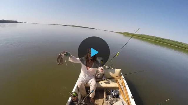 видео коньки  рыбная ловля  сверху сома